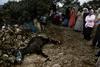Alhucemas, febrero de 2004: Duelo por el burro muerto.